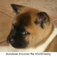 Maroteam Discover the World Kenny